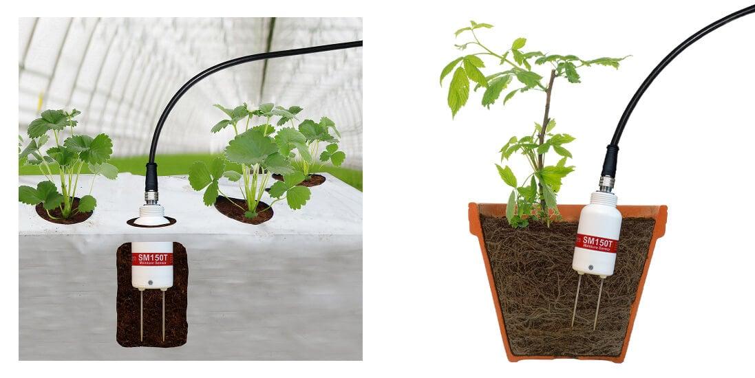 Comprar SM150-KIT Soil moisture humedad suelos y sustratos