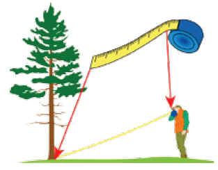 Comprar Clinómetro, hipsómetro y brújula digital Haglof HCH